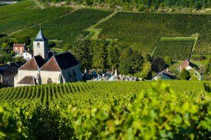 Шампань, солнечная сказка Франции